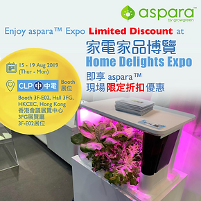 Home Delight Expo promo_1250.png