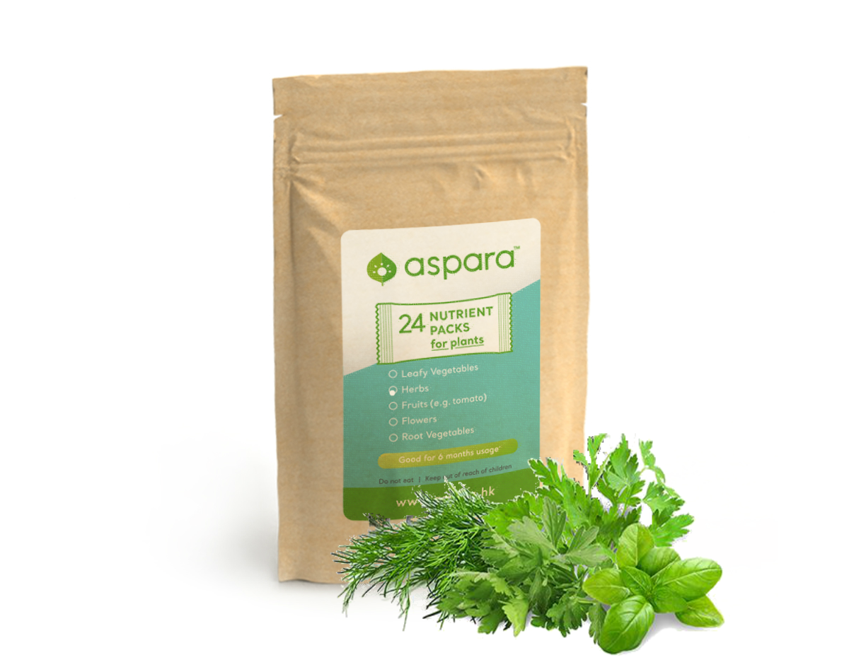 nutrient24_herb1200x1000.png