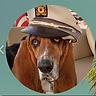 Humph Capt Hat.png