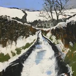 Snittlegarth Lonnin under Snow