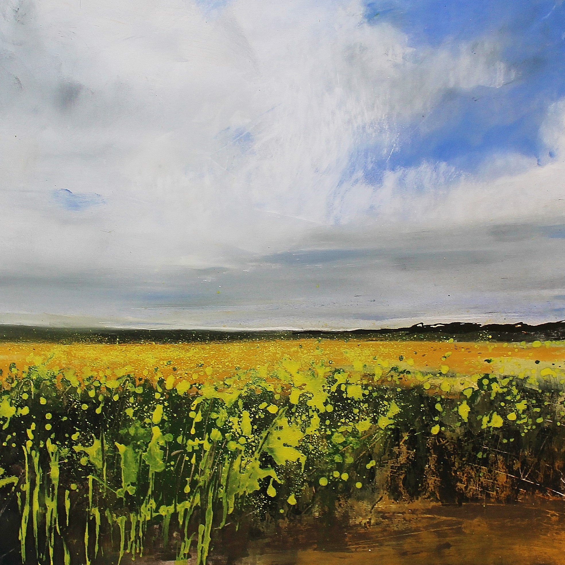 A Field Of Rape Seed, Allerby