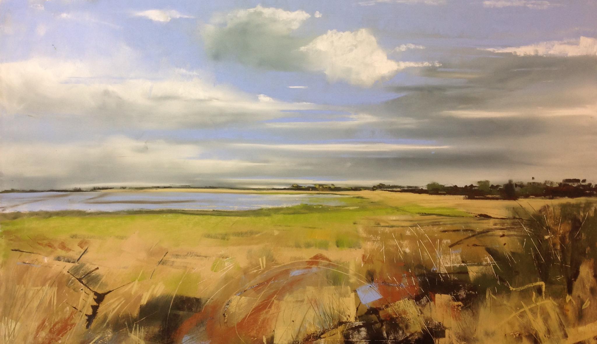 Dumfriesshire from Drumburgh Moss