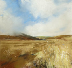 Longlands and Along