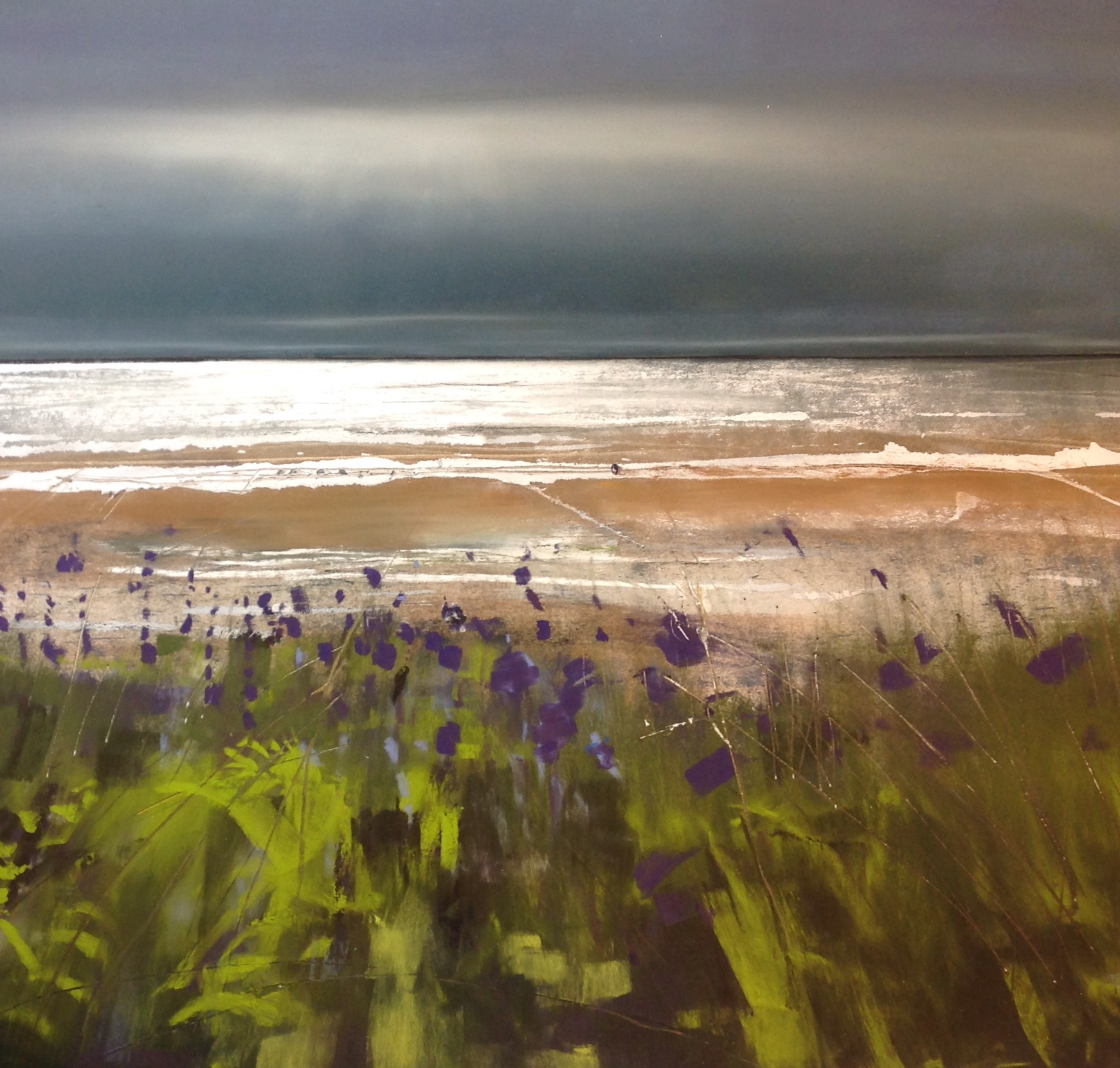 Bluebells at Allonby