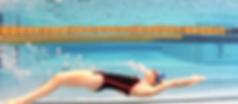 dolphin-underwater-shira.png