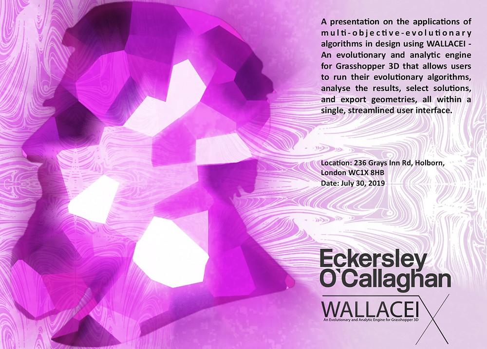 Eckersley O'Callaghan Wallacei