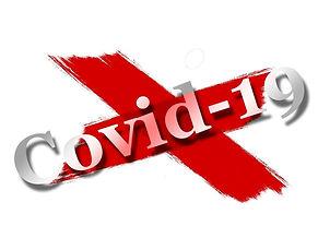 covid-19-4908691_1920-1024x768.jpg