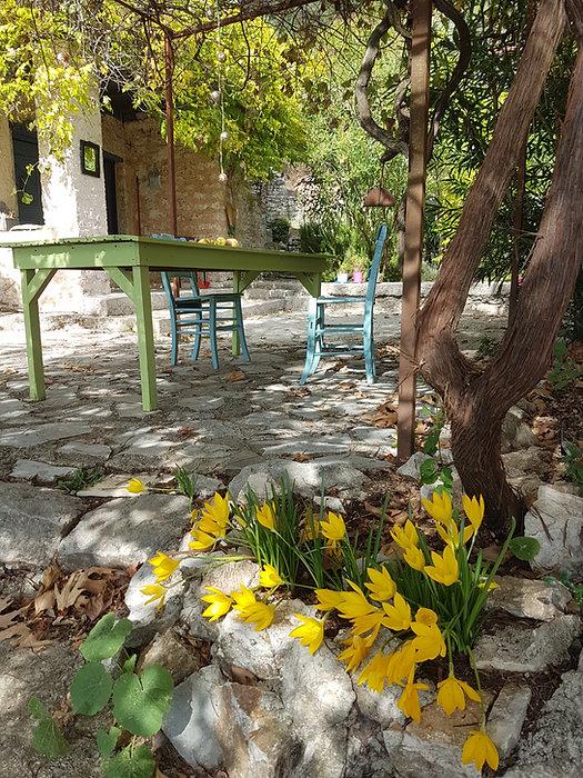 de tuin en onnze ontbijt en lunch plek