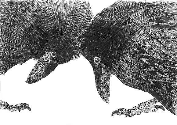 Two Ravens - Limited Edition Print