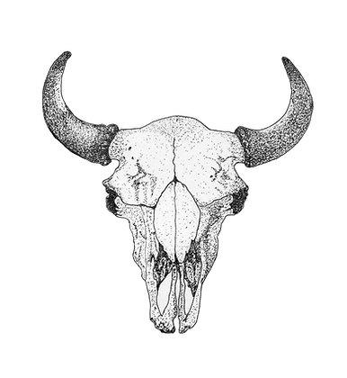 Buffalo Skull - Original Pen & Ink