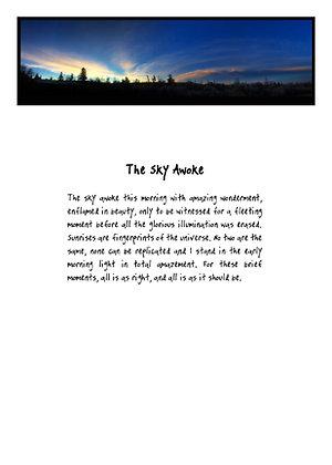 The Sky Awoke