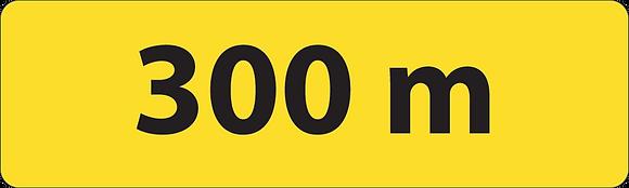 KM1 300 m