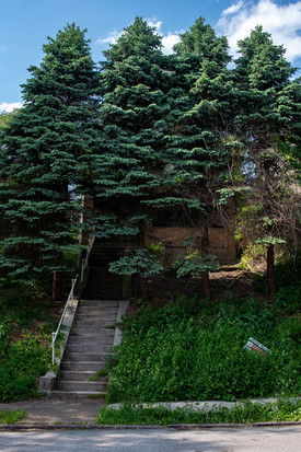 my childhood home (18 years abandoned)