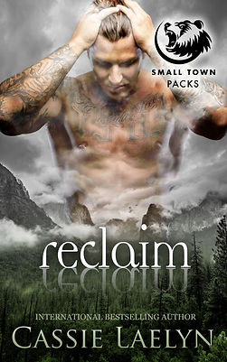 RECLAIM-cover-KINDLE.jpg