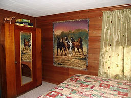 Cottage Custer, SD comfortable Beds