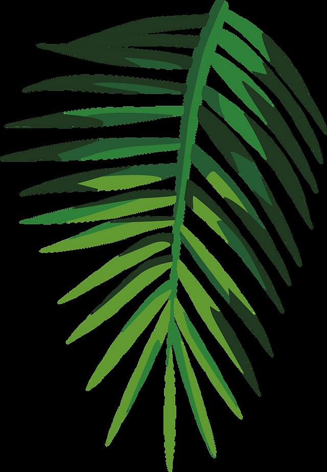 Tropical%2520Leaf_edited_edited.png
