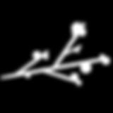 Inverse_Logo.png