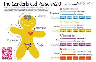 genderbread-2_1.jpg