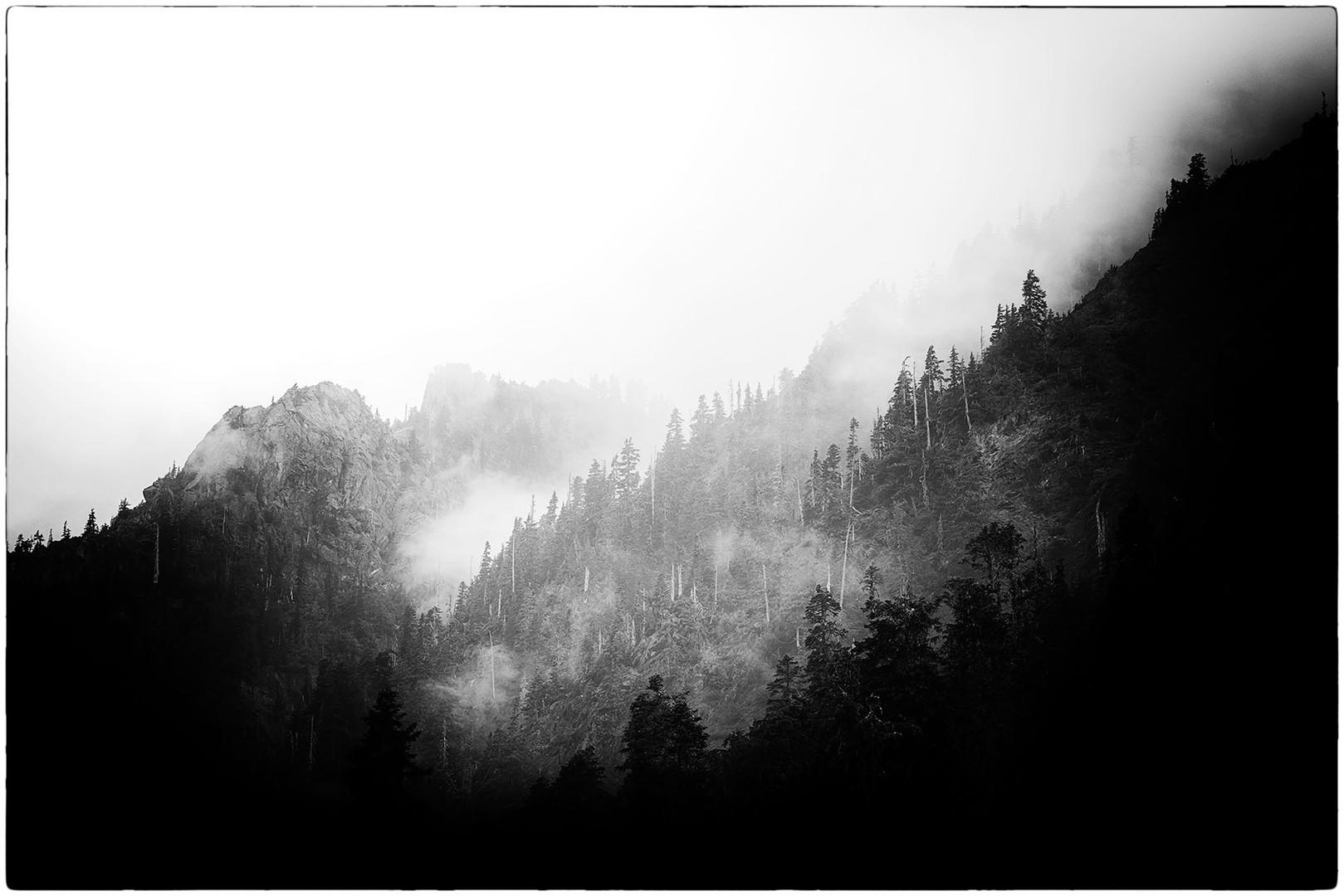 fog mountain.jpg