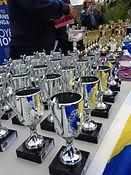 Prix tennis Victor Pommeret Lions