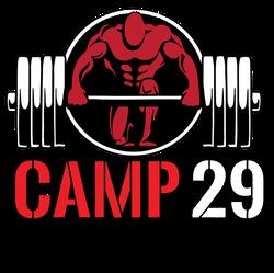 Camp%2029_Logo-01_edited