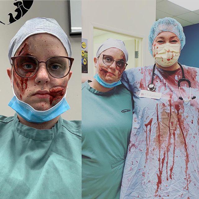 #killervet #veterinarian #firsttime #fsx
