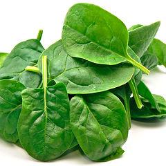spinach-web.jpg