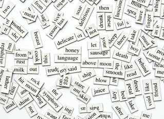 LawProse Lesson #287: The plague of wordiness