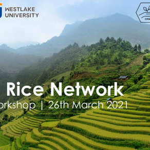 MARCH 2021 - SAT Lab hosts the Kick-Off Workshop of the China Rice Network