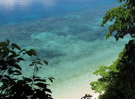 DECEMBER 2019 | New Publication: Ecosystem-Based Tsunami Mitigation in Biodiversity Hotspots