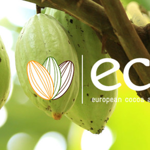 """APRIL 2021 - Tom talks about """"Resilient Cocoa Landscapes"""" at European Cocoa Association Meeting"""