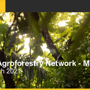 MARCH 2021 - SAT Lab is hosting the year's first Global Agroforestry Network (GAN) meeting