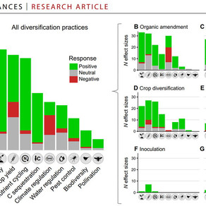 NOVEMBER 2020 - New meta-analysis on agricultural diversification effects on ecosystem services out
