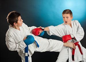 Kids Karate martial Arts.jpg