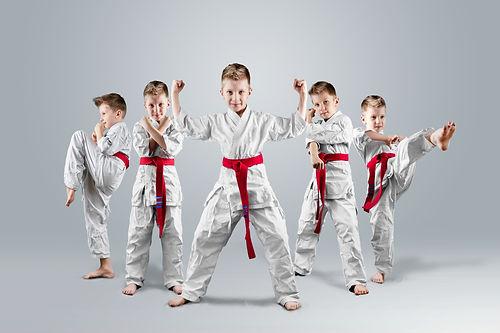A boy in a kimono in different karate po