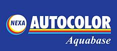nexa_autocolor-logo-3798627445-seeklogo.