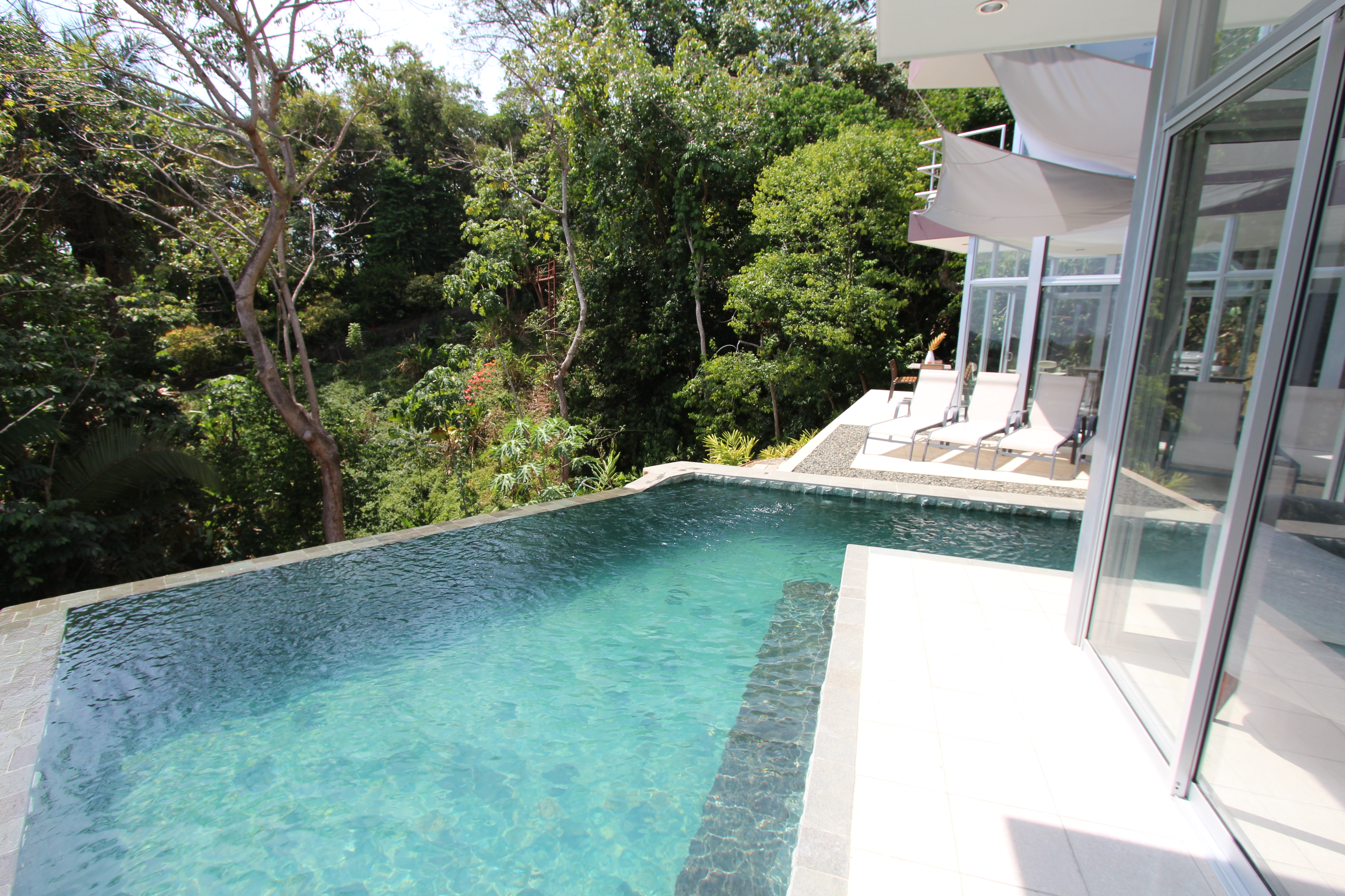 Infinity pool and jungle