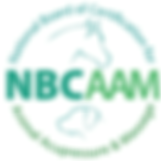 NBCAAM Logo.png