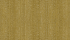 Brown bkg 2000px.png