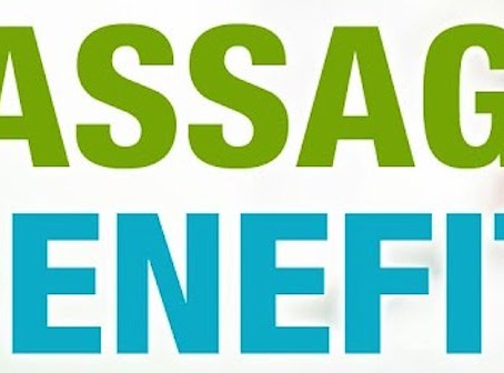 Massage Is Not Just About Spoiling Your Pet….
