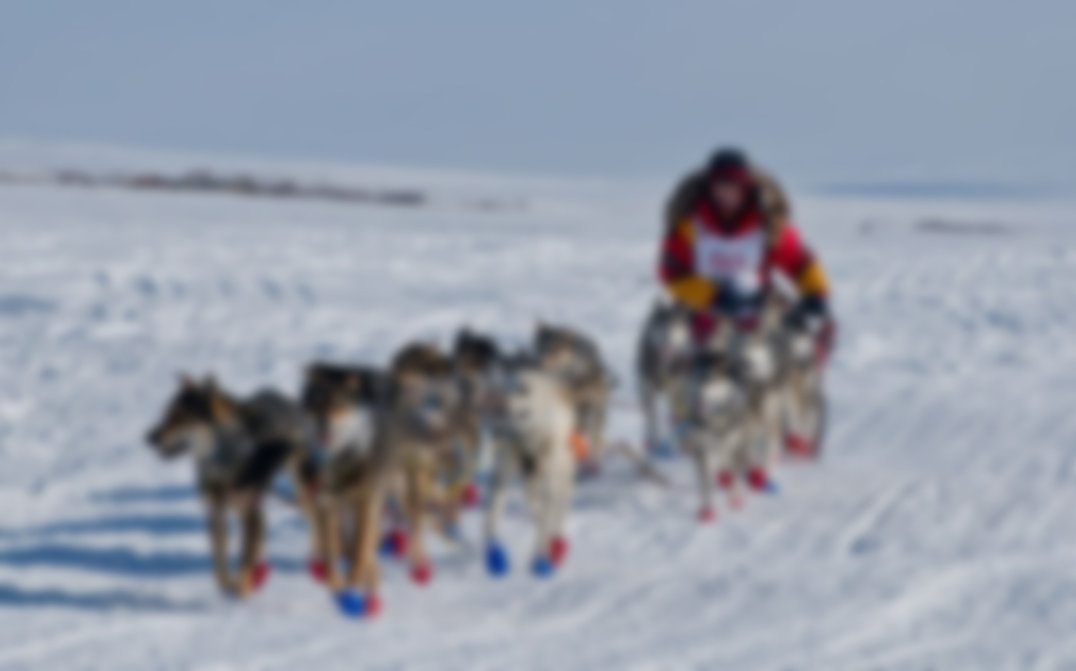 Iditarod-2017-SS-034 blur.jpg