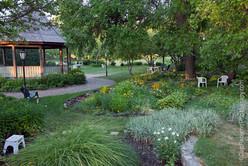Unity_in_Chicago_Garden_2_©PaternoGroup.