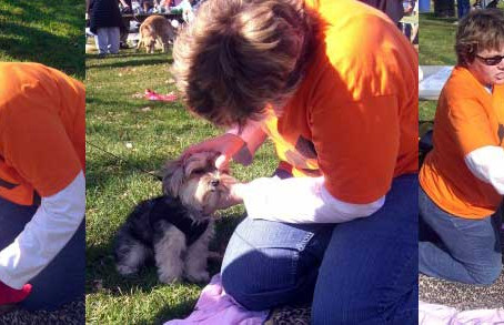 Photos from The Miles for the Mothers – A Benefit for The Puppy Mill Project