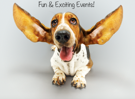 Great Pet Massage Events in June!