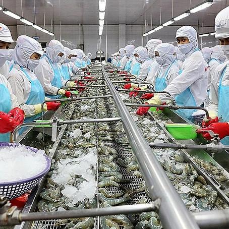Xuất khẩu thủy sản sẽ tiếp tục tăng trưởng trong quý 2021