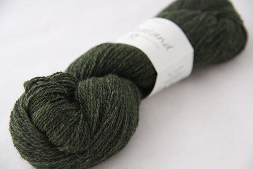 Bio Shetland 08