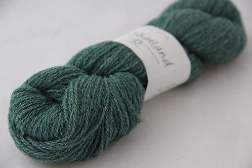 Bio Shetland 12