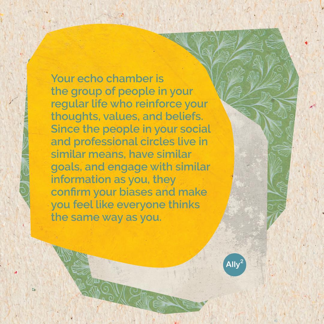 Echo Chamber Infographic slide 2