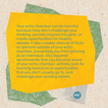 Echo Chamber Infographic slide 3