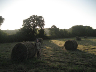 Research in Poland's Countryside
